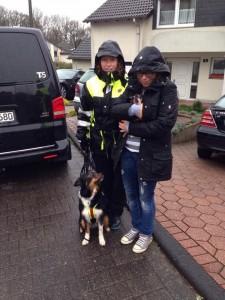 Suchhund Feline findet Pinscher Hündin Nicky